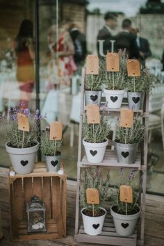 Potted Plant Ladder Seating Table Plan Chart Creative DIY Rustic Lavender Wedding http://www.nataliepluck.com/