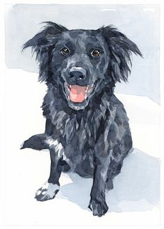 dog watercolor painting - david scheirer