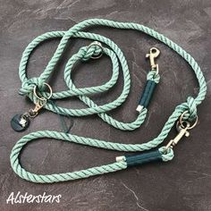 Dog Collars & Leashes, Dog Leash, Charms, Ring Der O, Diy Friendship Bracelets Patterns, Star Wars, Dog Clothing, Collar And Leash, Paracord