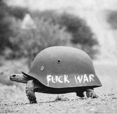 thetrippytrip:make peace not war