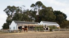 A Shed-Inspired Home, Designed To Age Gracefully Australian Architecture, Australian Homes, Australian Farm, One Bedroom House, Horse Fencing, Roof Trusses, Most Beautiful Gardens, Shed Homes, The Gables