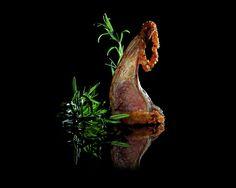 edible art by ilian , via Behance
