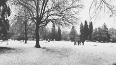 Revenge of the teens. Victoria park Vancouver BC december 2016.  #snowmen #vanparkboard #winter #pnwonderland #blackwhitephotography #bnw #monochrome #hicontrast #bnw_planet #bnw_city #bnw_creatives #bnw_fanatics #bnw_addicted #bnw_captures #instablackandwhite #insta_bw  #noir_vision #simply_noir_blanc