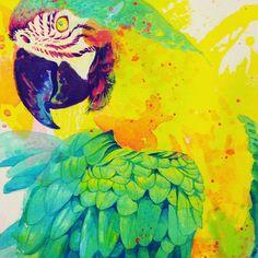 今回はこんな感じ #illustrator #illustration #drawing #pairing #bird #parrot #thailand #tropicalbird #毎回テイスト変わりすぎ #定まらないのが私らしさ #それでいいのよ by akifile http://www.australiaunwrapped.com/