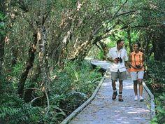 Cape Coral, Florida - Four Mile Cove Ecological Preserve