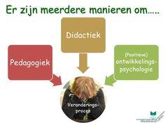 Er zijn meerdere manieren, laten we ook de ontwikkelingspsychologie meenemen in onze begeleiding/onderwijs.