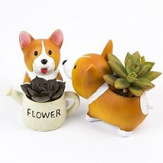 A Corgi succulent pot for when your significant other should be treated like the Queen of England… | 26 Awesome Valentine's Day Gifts You Can Actually Afford