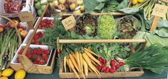 Hastings and Napier Weekend Markets, Hawke's Bay Tourism Produce Market, Farmers Market, Havelock North, Tourism Website, Wine Recipes, Marketing, Vegetables, Food, Black Barn