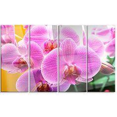 DesignArt 'Beautiful Purple Orchid Flowers' 4 Piece Photographic Print on Canvas Set