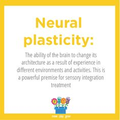 Neural Plasticity: The ability of the brain to change its architecture as a result of experience in different environments and activities. This is a powerful premise for sensory integration treatment.