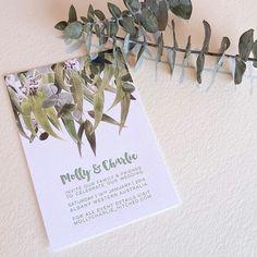 Eucalyptus invites