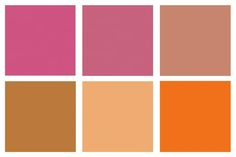 Designer-Tested Palettes: Powerful Pinks & Punchy Tangerines from Schuyler…