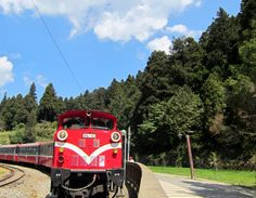 Train in the forest (2036x1584, forest)  via www.allwallpaper.in