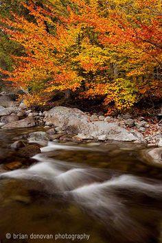 Excellent Landscape Photography-12 #landscapephotography #photography #beautifulphotography