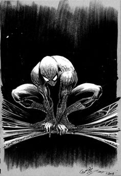 Spiderman by Daniel Govar