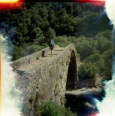 Genovese brug bij Ota, Corsica. Holga 120 CFN met Lomography CN 400 film.