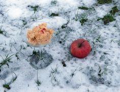 Apfel-Granita mit Schuss Sorbet, Parfait, Granita, Plum, Peach, Fruit, Vegan Recipes, Apple, Prunus
