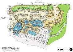 Woodland Park Zoo - Humboldt Penguin Exhibit Site Plan - Studio Hanson Roberts