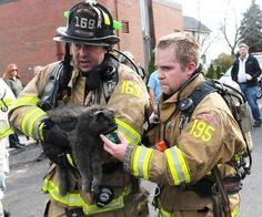 Firefighters are heroes. Firefighters that rescue cats are gods.
