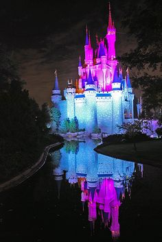 Disney Land Florida. Kids next dream holiday! One day......!I want to go see this place one day. Please check out my website Thanks.  www.photopix.co.nz