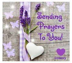 Discover and share Sending Prayers Quotes. Explore our collection of motivational and famous quotes by authors you know and love. Get Well Prayers, Get Well Wishes, Prayer Chain, Prayer Box, Get Well Soon Quotes, Sending Prayers, Religion, Prayer For You, Prayers For Healing