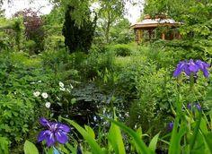 www.rustica.fr - 4 vidéos pour reproduire chez soi un jardin humide de paysagiste