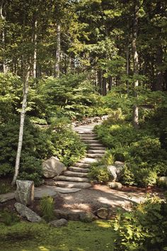 Love the naturalness and discovery of this space Coastal Maine Botanical Gardens Made in the Shade Landscape Lighting, Outdoor Lighting, Lighting Ideas, String Lighting, Garden Stairs, Sloped Garden, Sloped Backyard, Garden Beds, Woodland Garden