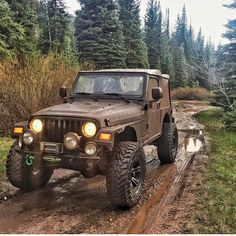 mauricevilleneuve - 0 results for jeep Cj Jeep, Jeep Wrangler Tj, Jeep Truck, Cool Jeeps, Mercedes Car, Jeep Life, Lifted Trucks, 4x4 Trucks, Diesel Trucks