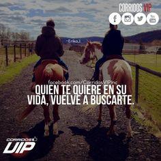 Cierto.!   ____________________ #teamcorridosvip #corridosvip #quotes #frasesvip