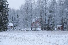 Kotitalo lumisateessa. // My house in snowfall.