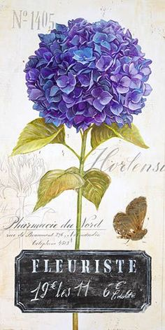 Parisian HydrangeaBy Angela Staehling Printable image for decoupage and transfer purposes - Hydrangea – Angela Staehling Images Vintage, Vintage Diy, Vintage Labels, Vintage Ephemera, Vintage Cards, Vintage Paper, Art Floral, Hydrangea, Impressions Botaniques