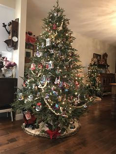 Colorful Christmas Tree, Hallmark Ornaments, Christmas Decorations, Holiday Decor, Home Decor, Decoration Home, Room Decor, Home Interior Design, Christmas Decor