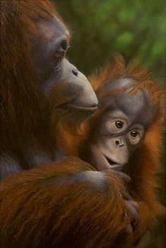 Original Art | Gallery | Sandra Temple Ape Monkey, Artist Gallery, Mammals, Temple, Original Art, The Originals, Monkeys, Artists, Rompers