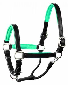 Mint green padded leather halter