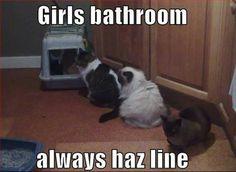 The Ladies Room.
