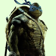 "Which Teenage Mutant Ninja Turtle Are You Actually? You got: Leonardo. Serious and responsible, you're a natural leader and tend to fall into the ""big brother / big sister"" role within any friend group. You are courageous, decisive, and the hardest working person you know. Oh, and you also look great in blue."