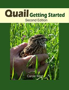 Quail Getting Started Second Edition by [West, Carole]