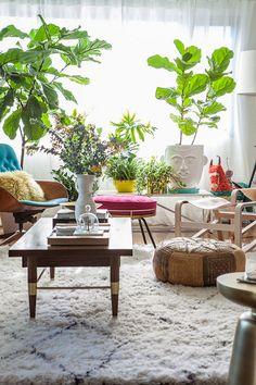 designlovefestlivingroom inspiration: house plants  Do a Vignette like this...Fiddle Leaf Figs, Rug, and all...