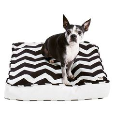 """""""So the dog can sleep in your bedroom and you don't have to live with some ugly bone-shaped corduroy thing.""""    """"Glory Days"""" small dog-bed duvet, $25, and stuff sack, $10, Molly Mutt."""