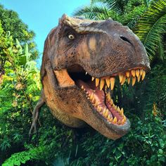 T Rex in Island of Adventure