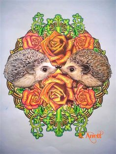 Bennett Klein Colour my sketchbook Wild