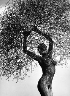 Neith with Tumbleweed, Paradise Cove 1986  Photo by Herb Ritts