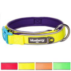 Blueberry Pet Soft and Comfortable Summer Hope 3M Reflective Neoprene Padded Dog Collar, 4 Colors, Matching Harness Available Separately -- Read more at the image link. (This is an affiliate link and I receive a commission for the sales)