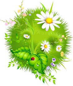 691 best clipart spring flowers images on pinterest flower art fleursfloresflowersbloemenpng mightylinksfo