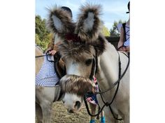 Big Bad Wolf Costume for Ponies or Riding Horses Big Bad Wolf Costume, Wolf Tail, Costume Contest, Costume Ideas, Welsh Pony, Red Riding Hood Costume, Riding Horses, Horse Costumes, Ponies