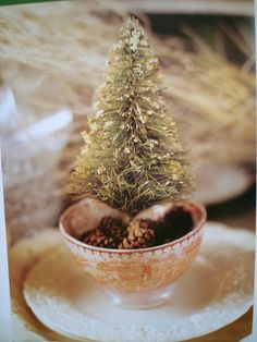 Christmas tree in a tea cup would serve as festive decorations for a holiday dinner party #indigo #magicalholiday