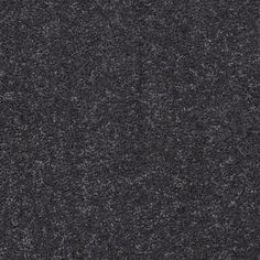 Home Decorators Collection Carpet Sample Tradeshow Ii Color Frosty Texture 8 In X 8 In Carpet Samples Carpet Carpet Fitting