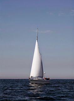 Hullaannu ja hurmaannu Lighthouse, Boat, Animals, Bell Rock Lighthouse, Animales, Light House, Animaux, Boats, Animais