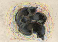 The Creative Cat - Daily Sketch: Black Cats Dreaming in Color