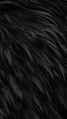 Find images and videos about black, wallpaper and feather on We Heart It - the app to get lost in what you love. Gold Wallpaper Background, Fur Background, Feather Wallpaper, Black Phone Wallpaper, Dark Wallpaper, Screen Wallpaper, Iphone Wallpaper, Embossed Wallpaper, Black Backgrounds